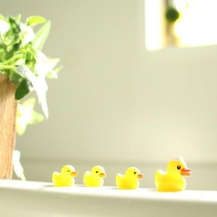 アヒル入浴